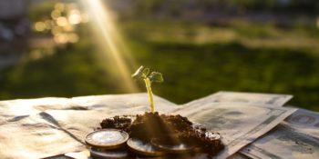 Nachhaltige Geldanlage – der ultimative Guide